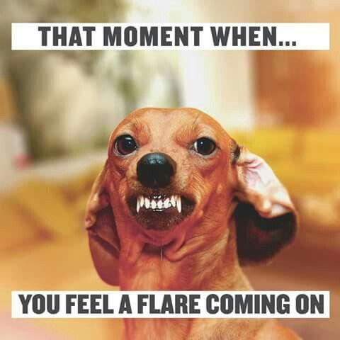 flare blog 2