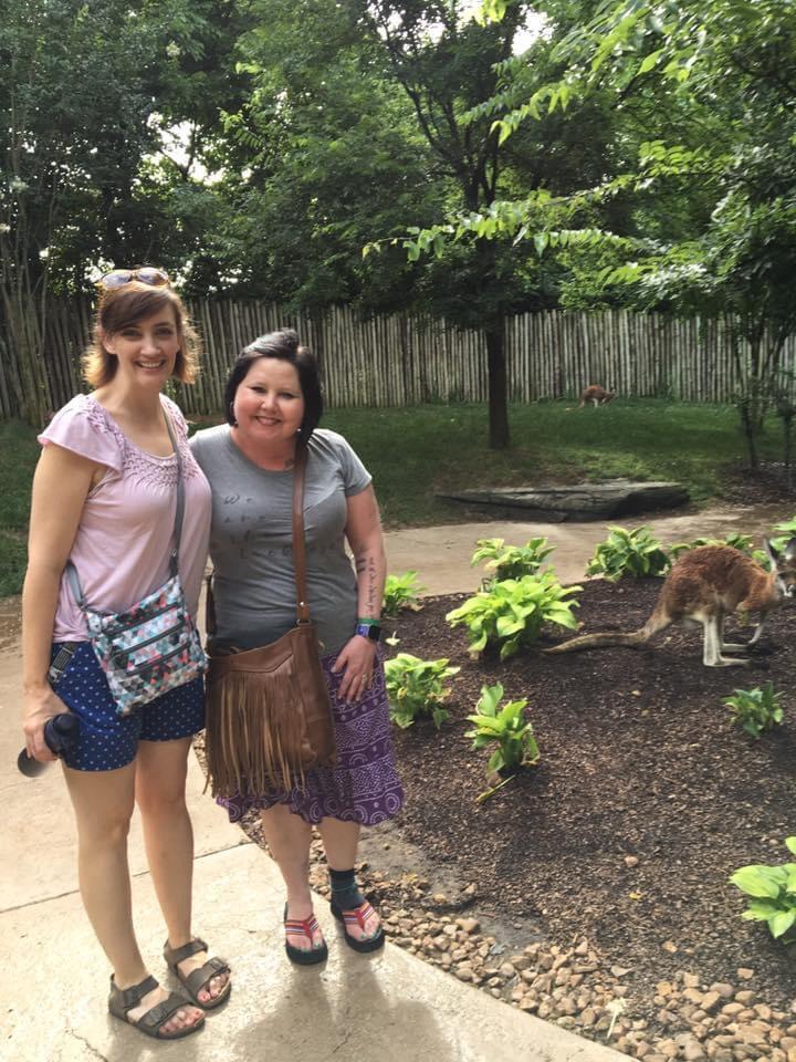 Meeting the kangaroos at the Nashville zoo.